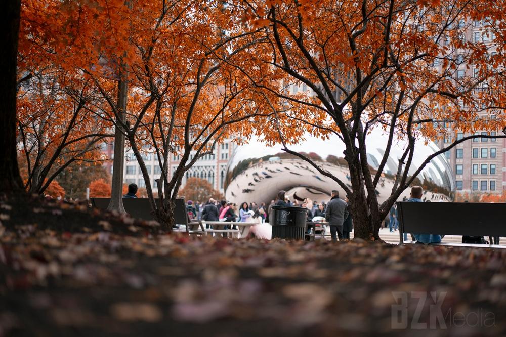 Millenium Park in the Fall pt.2